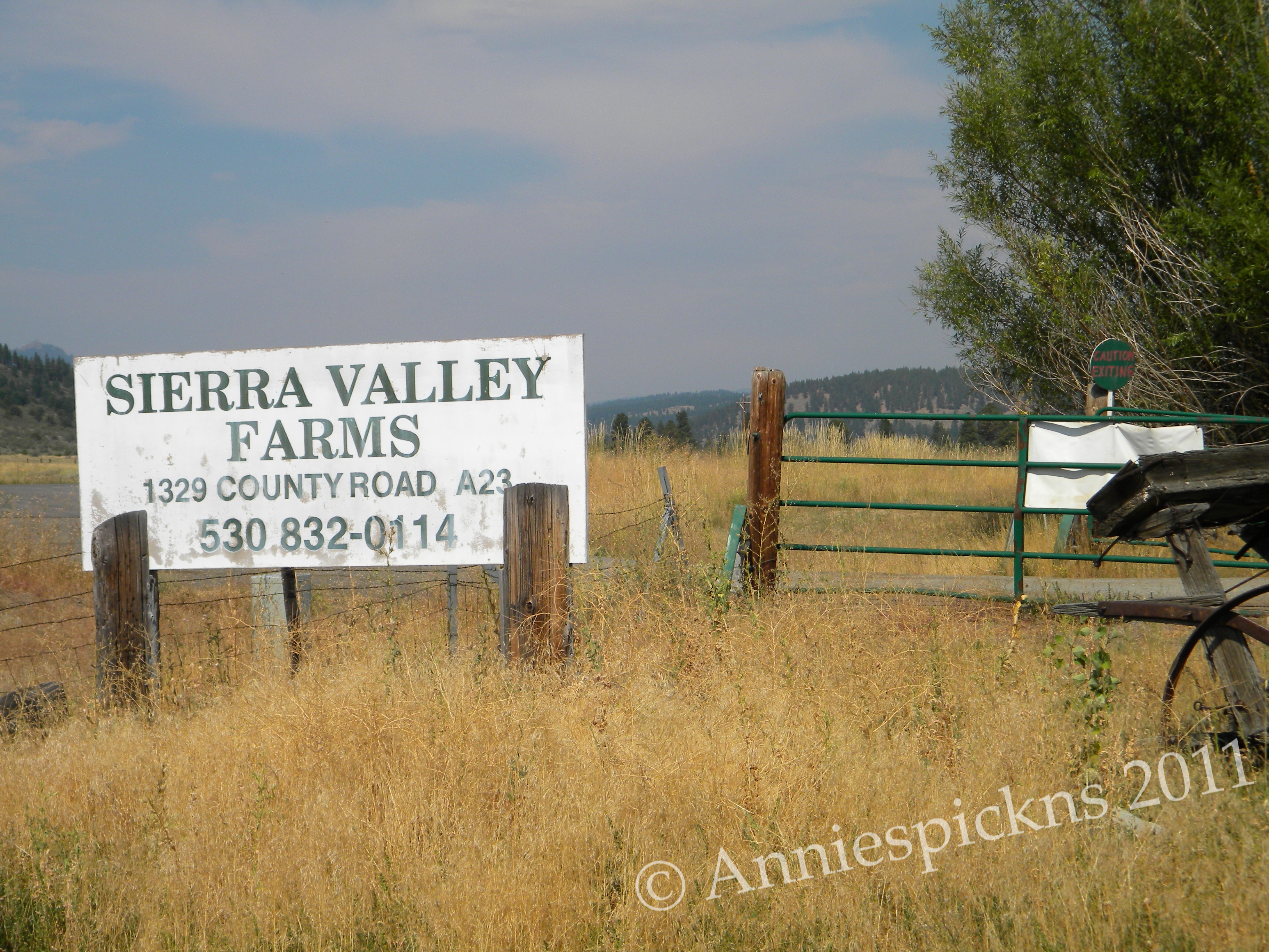 A one of a kind california farmers market anniespickns for Sierra valley