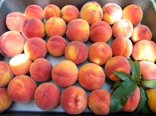Edith's peaches